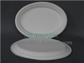 10inch Middle Oval Plate