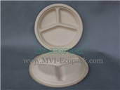10 Inch Round Plate with 3C